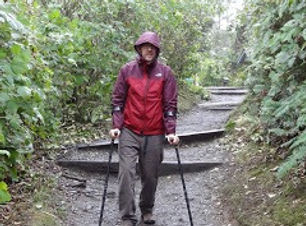 dave hikes with forearm crutches.jpg