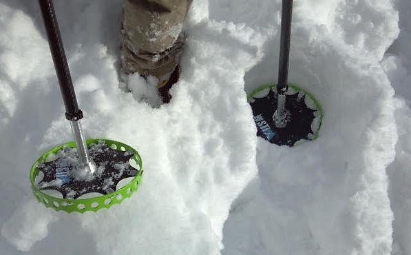 sidestix snowshoes.jpg