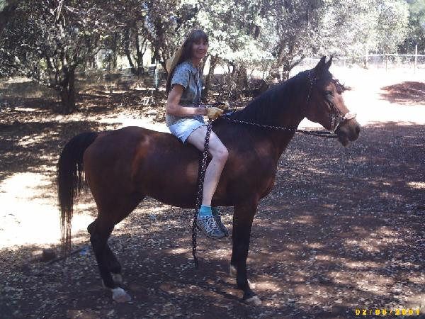 horseback riding with MS