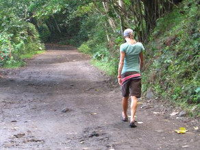 Walking with MS: Where Are You Going?