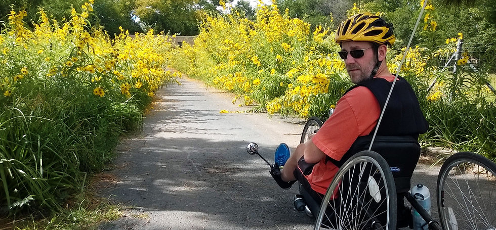 dave biking with sunflowers in a cooling