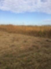 新潟 草刈り、新潟、草刈り、草刈り代行、greenfields、グリーンフィールズ