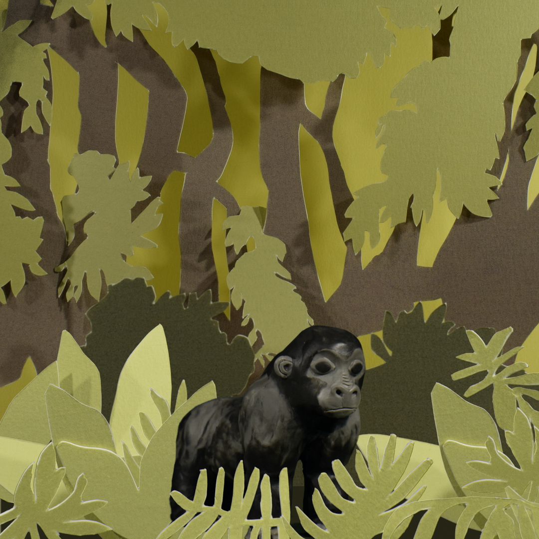 Gorilla gif_00000.png