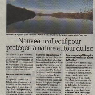 2.article_création_du_collectif.jpg