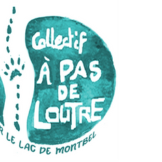 logo rond turquoise gimp.png