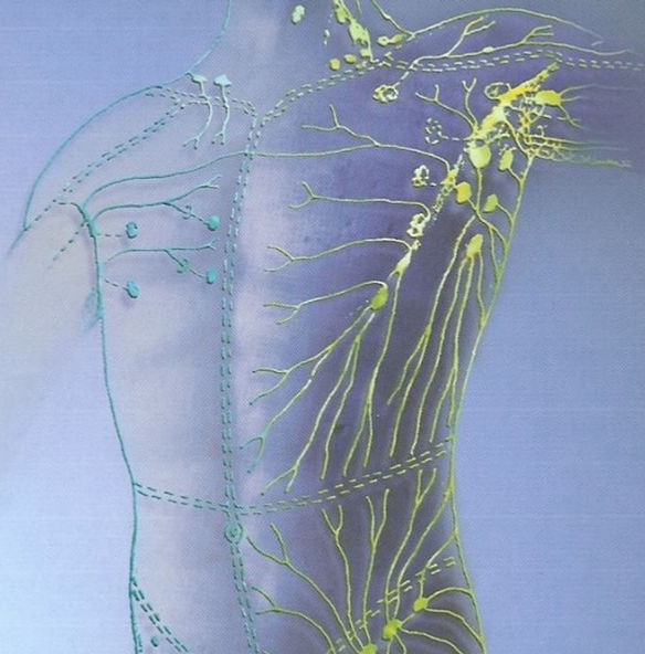 Lymphatic%20Drainage%20Therapy%20%23lymp