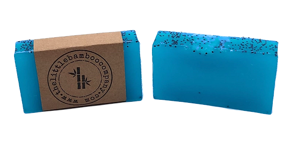 Dead Sea Salt Soap Bar