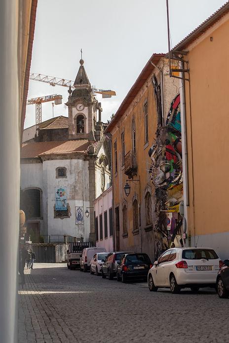 Porto Half Rabbit picture