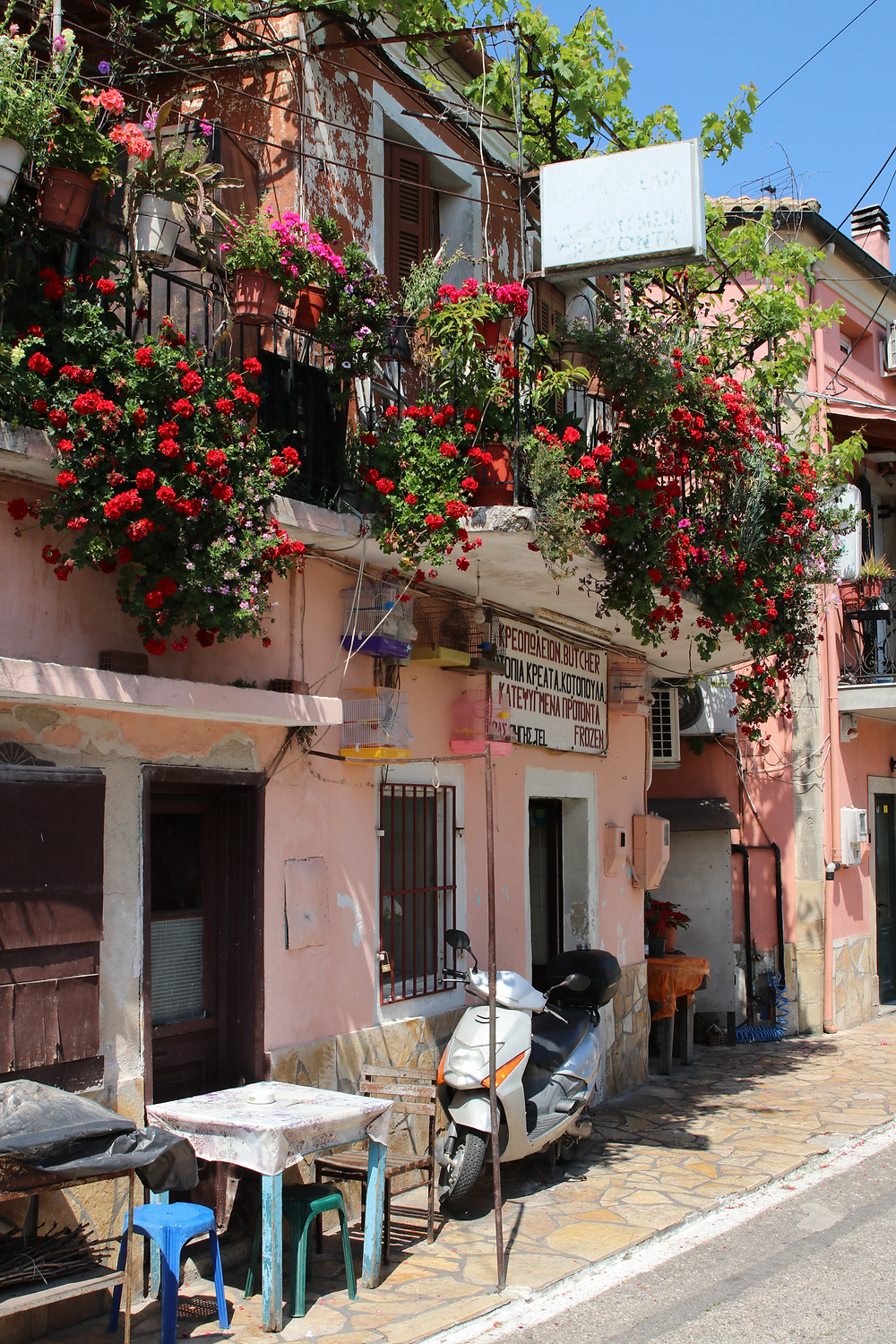 House in Sinarades, Corfu, full of red flowers