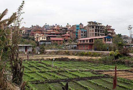 Plantation Bhaktapur Nepal Asia