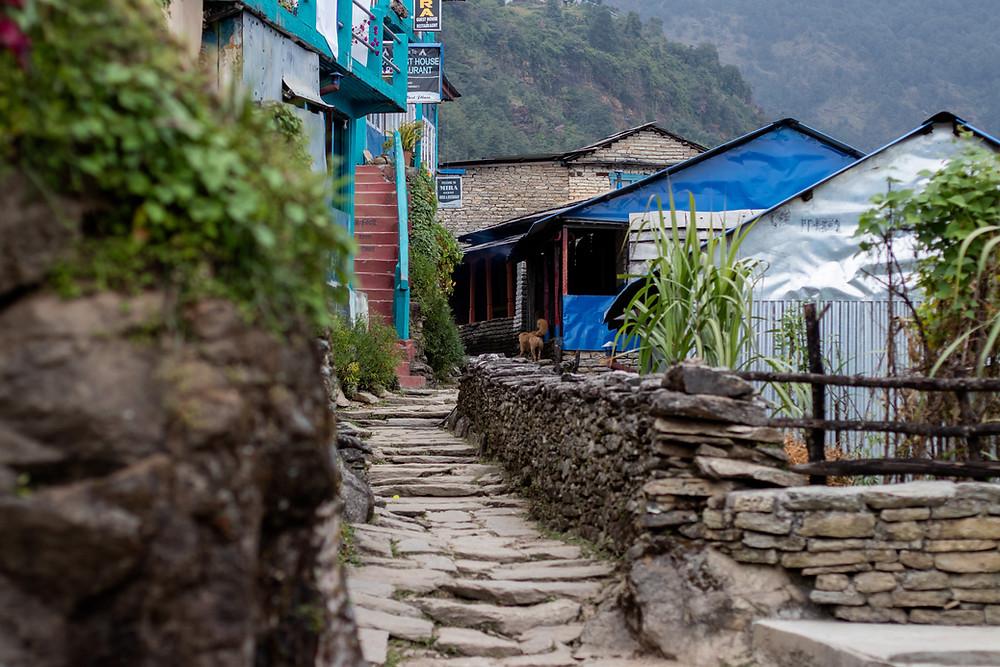 Blue houses in the village Ulleri (by Hungrigaufmeer)