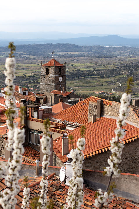 View of the town of monsanto in portugal