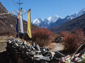 Ultimativer Guide zum Langtang Valley Trek: unser Erfahrungsbericht sowie hilfreiche Tipps