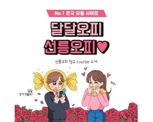 선릉오피 정규 course 소개