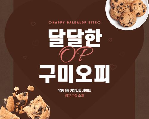 구미오피 정규 구성 소개
