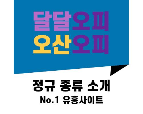오산오피 정규 종류 소개
