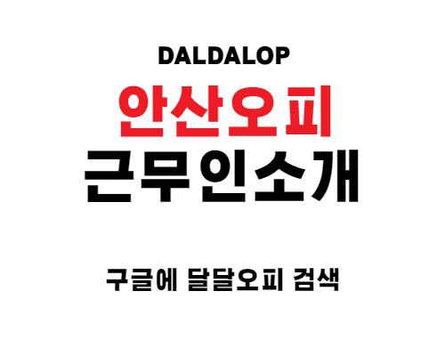 안산오피 근무인 소개