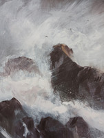 Storm Study Detail