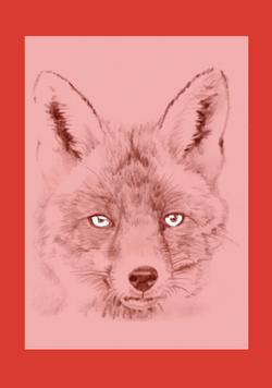 Red Fox white eyes red border