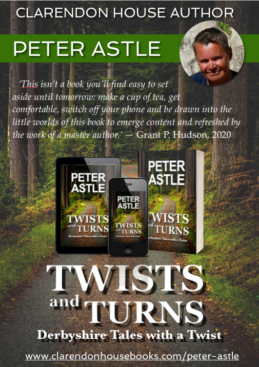 Twists and Turns ad image.png