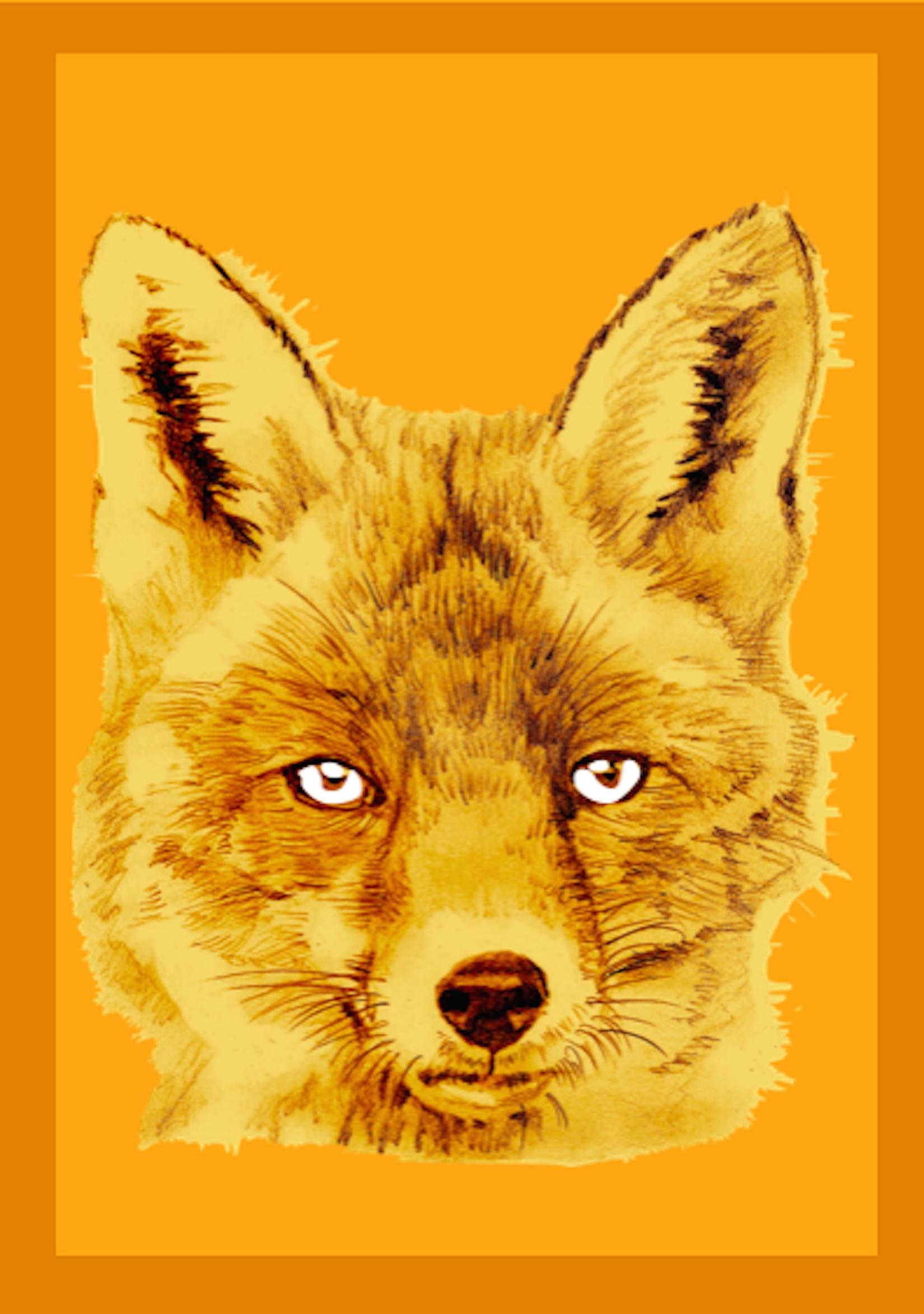 Fox orange variant