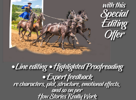 Frequently Asked Questions About My Editing/Proofreading Offer