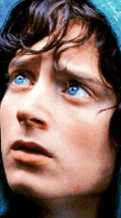 Frodo's Motivation