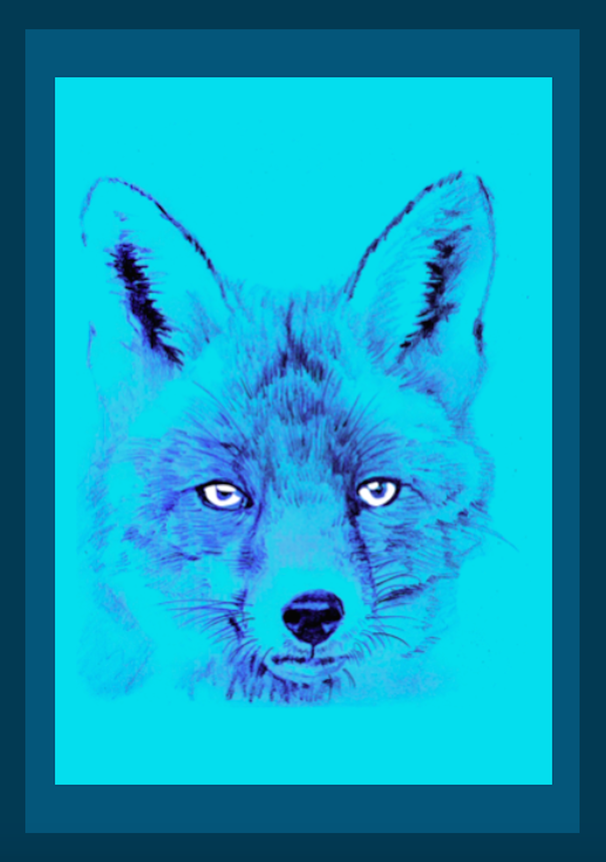Fox blue variant