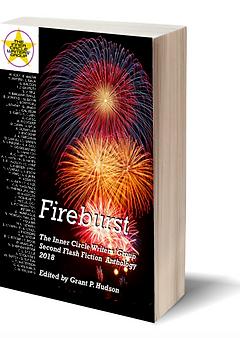 3D Fireburst cover image.png