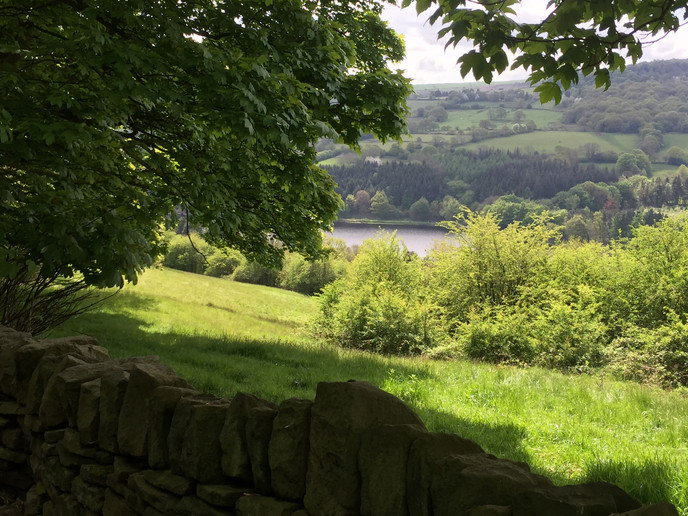 Yorkshire and Middle-earth 3
