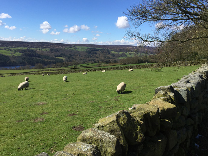 Yorkshire and Middle-earth 2