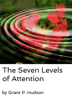 Seven levels cover image.png