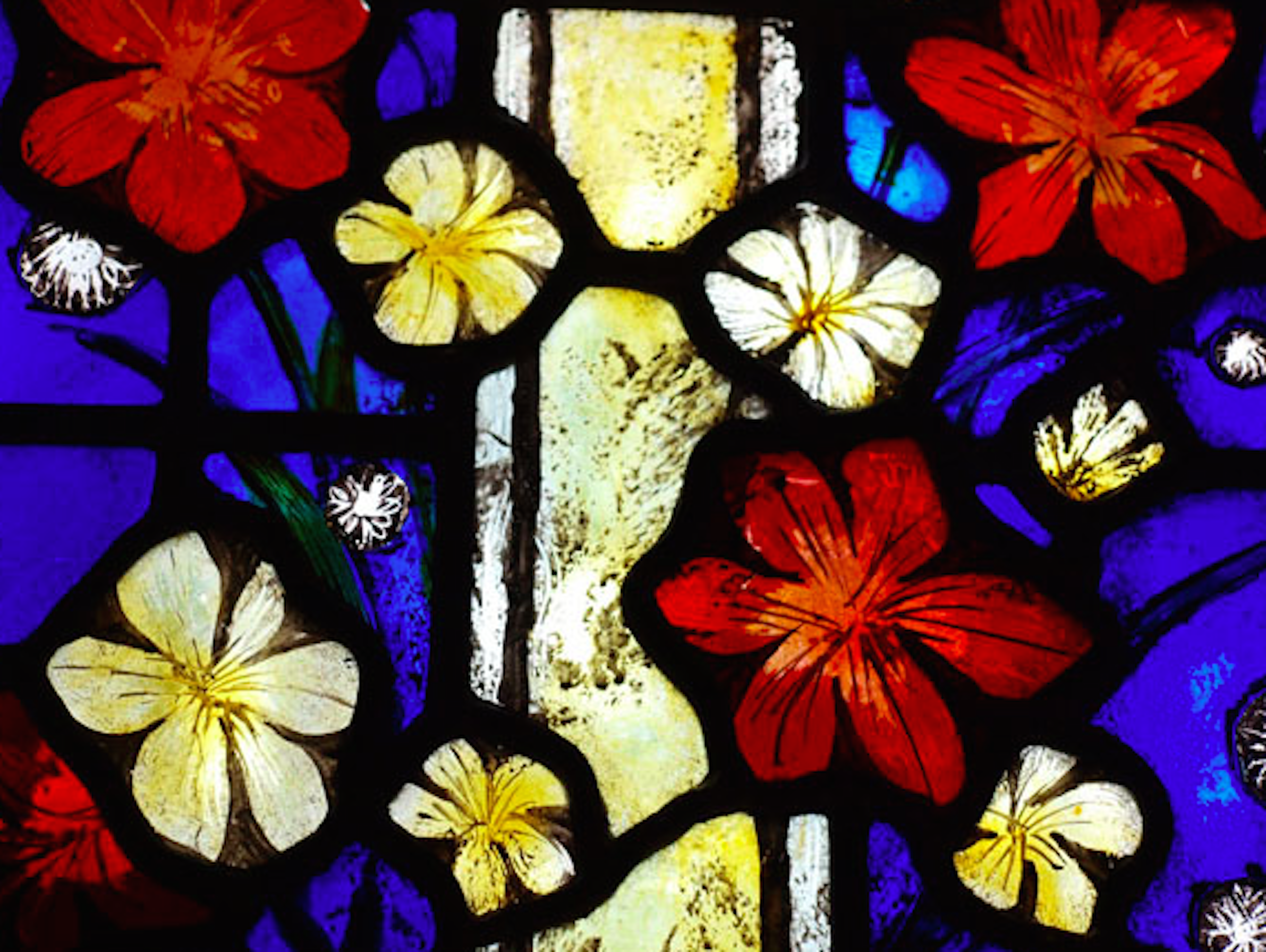 Stained Glass image copy