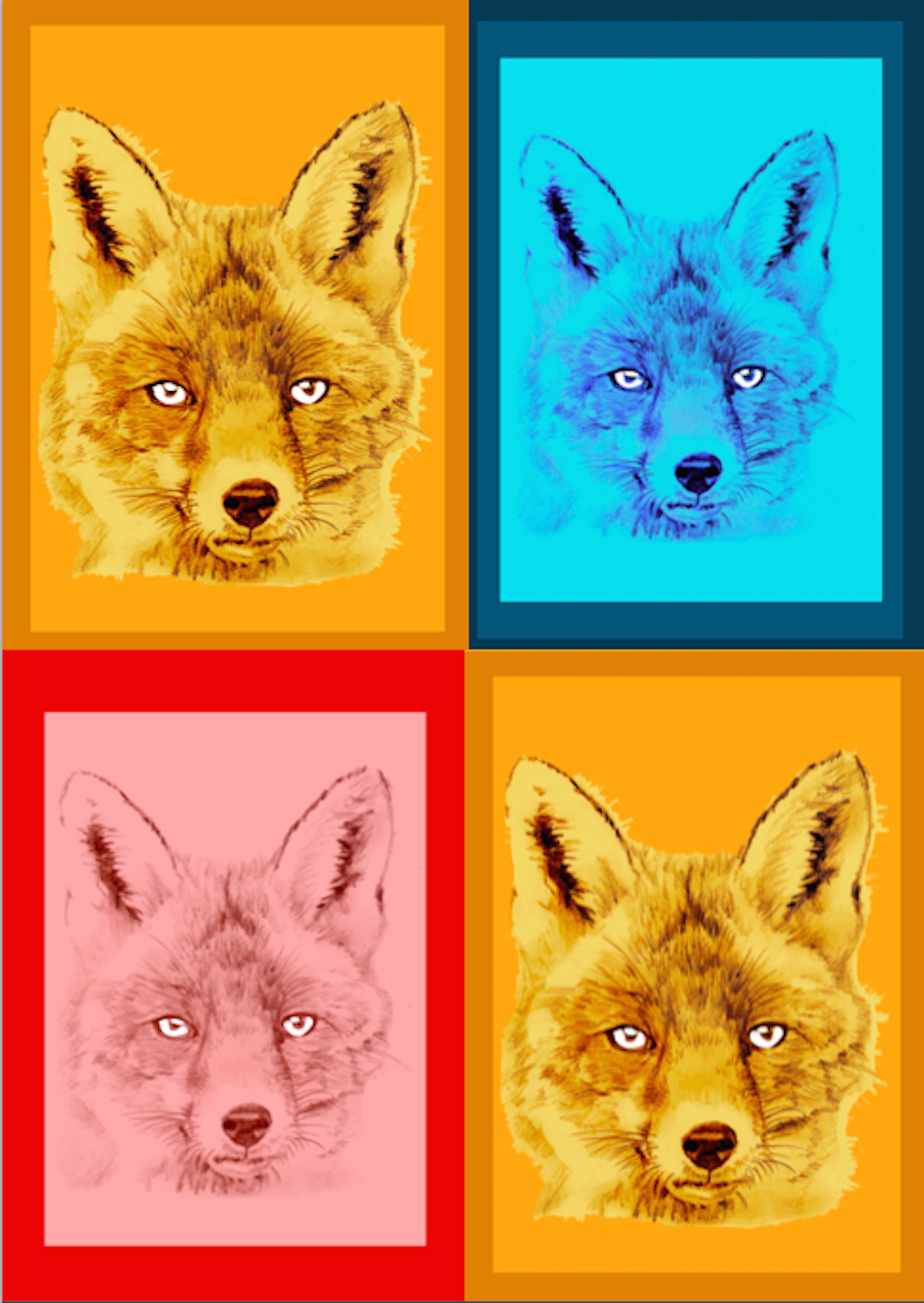 Foxes Together