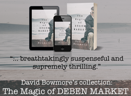 An Overview of Reviews for The Magic of Deben Market by David Bowmore