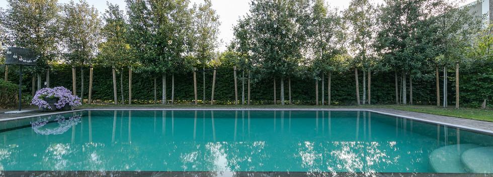 Buitenzwembad Wellclusive Rijkevorsel.jp
