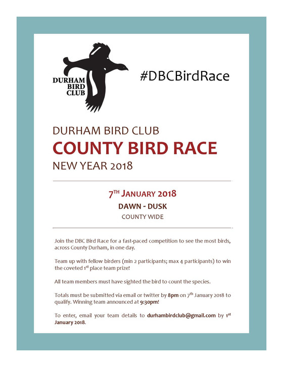 DBC County Bird Race 2018