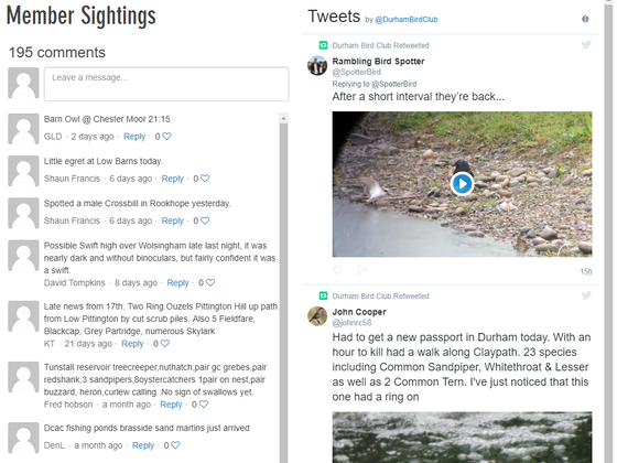 Improved Daily Sightings Page