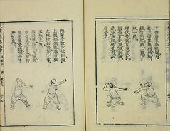 A page from Fist stances from 拳經捷要 General Qi Jiguang Fist Manual
