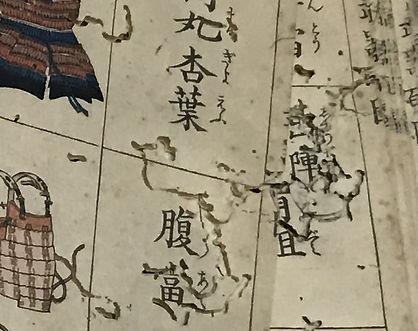 Wormholes in an antique Samurai weapon manual