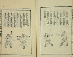 Fist stances from 拳經捷要 General Qi Jiguang Fist Manual