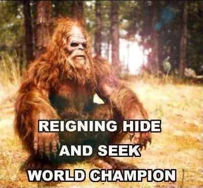 big-foot-reigning-hide-and-seek-world-ch