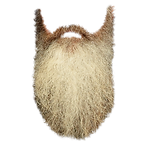 santa-beard-transparent-1.png