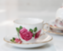 High Tea Ladies cup and saucer