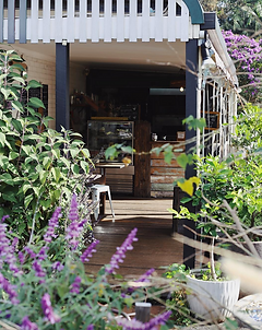 Byron Bay Hinterland treasures Clunes Store