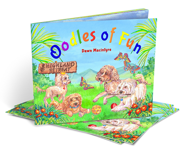 Oodles of Fun Book One and Two - BULK ORDER 4 COPIES 2 of each