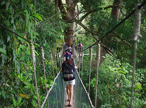 KinabaluParkPor-sabahbooking-2_1200.jpg