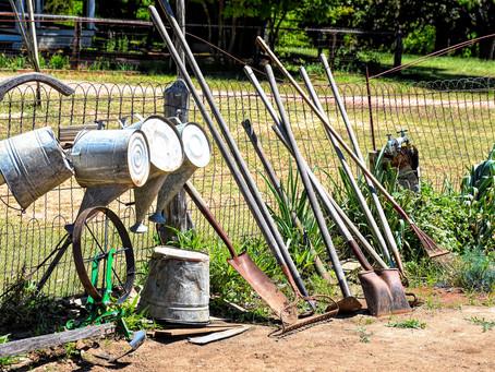 Le jardin potager communautaire des agendettes