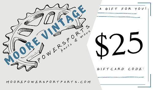 $25 - electronic gift card