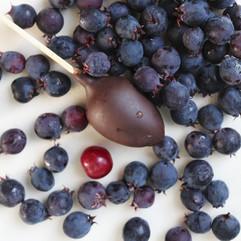 berry-3579336_1920.jpg